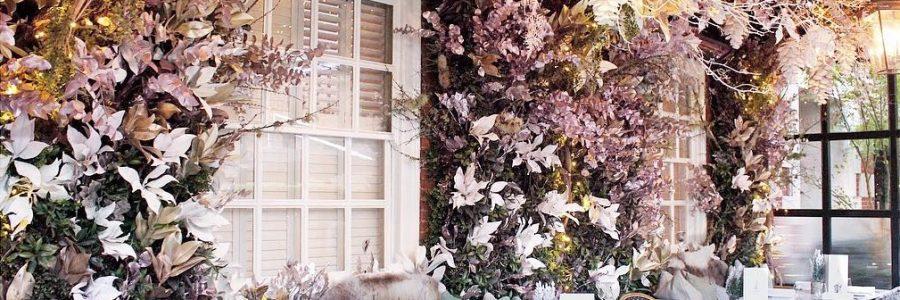 kwiaty na tarasie zimą